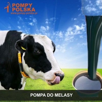 Pompa do melasy